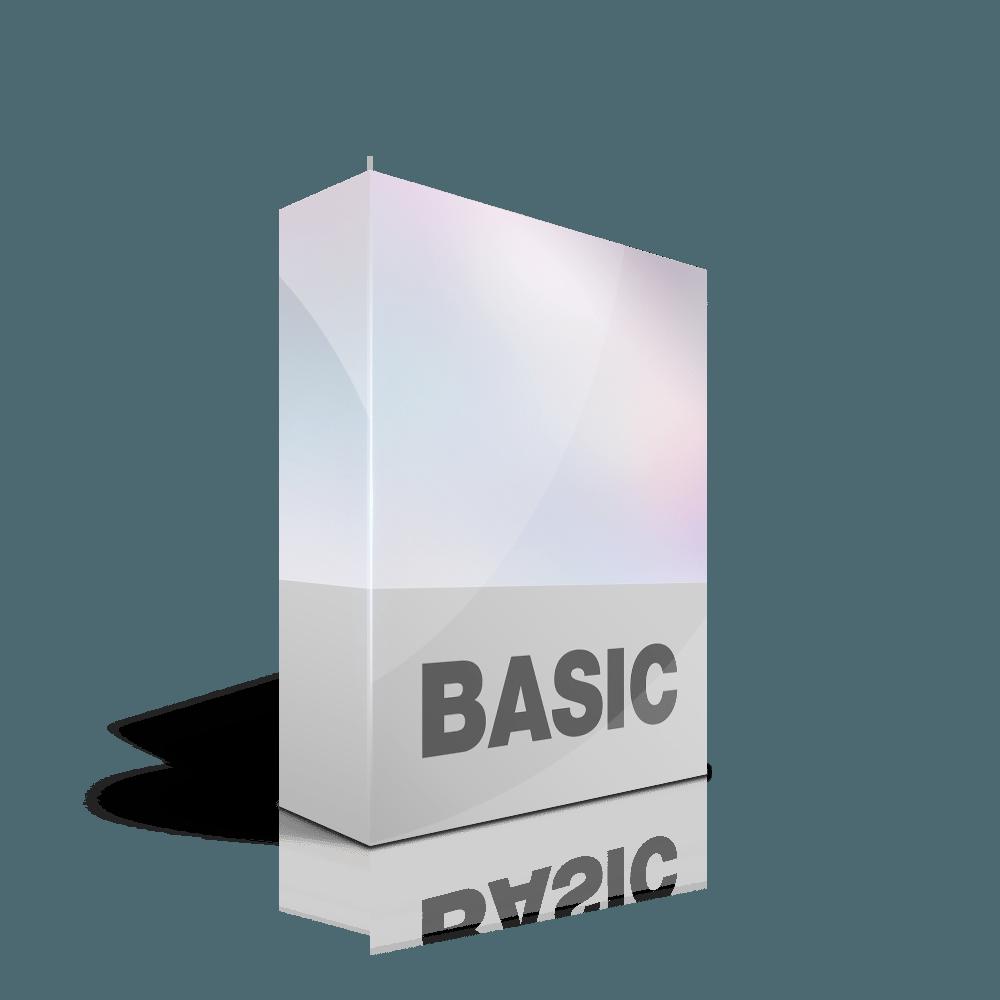 Webdesign Paket Basic