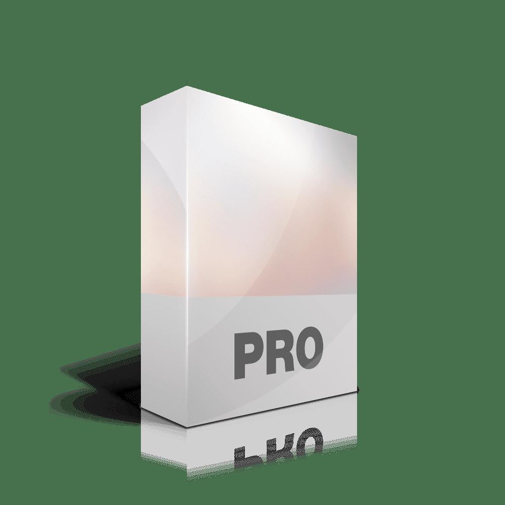Webdesign Paket Pro